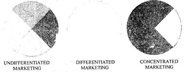 DU SOL B.Com 3rd Year Marketing Management Notes Chapter 3 Marketing Segmentation 1